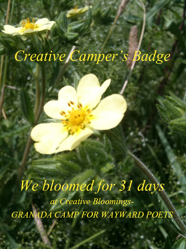 Creative Blooming Summer Camp